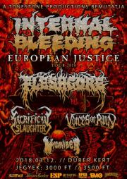Internal Bleeding [USA], Fleshgore [UA], Sacrificial Slaughter [USA], Voices Of Ruin [USA], MICAWBER [USA]
