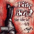 Limp Bizkit - The Dollar Bill,Yall