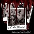 Salt The Wound - Bedsprings and Bloodshed  (EP)